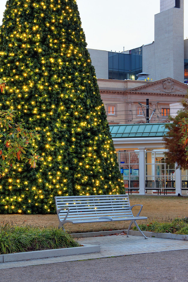 MacArthur Station Seating & Christmas Tree